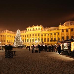 Market Schönbrunn