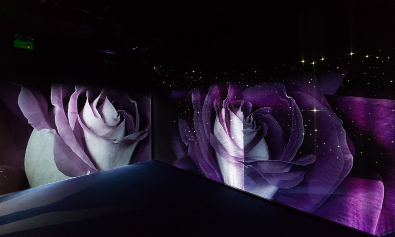 Hologram Room 2.jpg