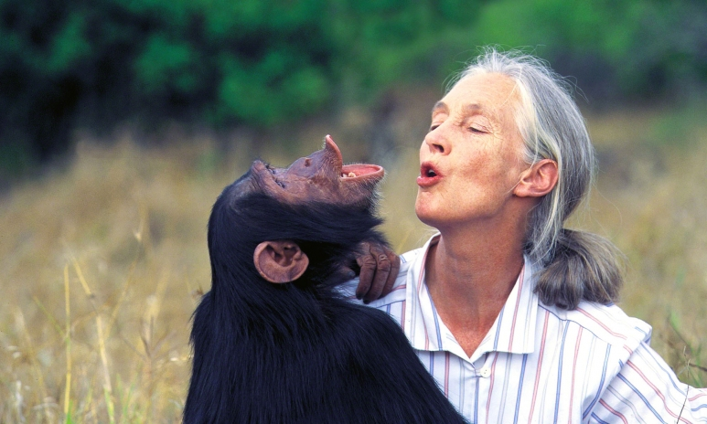 Jane-goodall-kissing.jpg