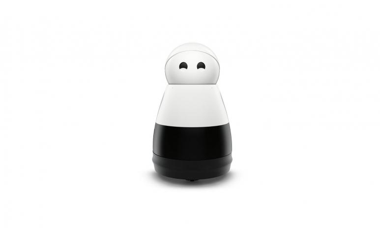 Kuri-Robot.jpg