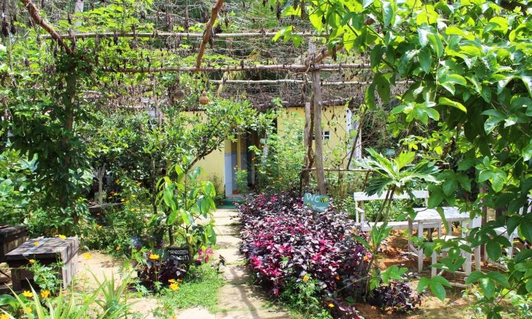 Phu Quoc Bee farm.jpg