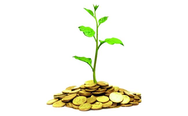 0- wealth 2.jpg -